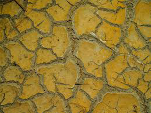stoney ground